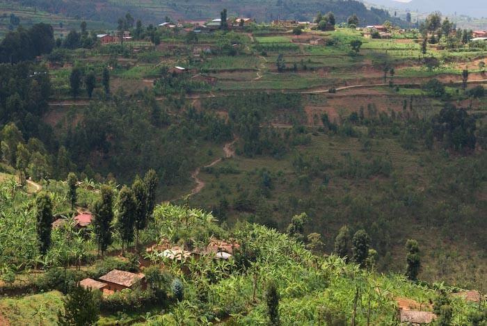 ルワンダ]ギコンゴロ | やわらかに風が